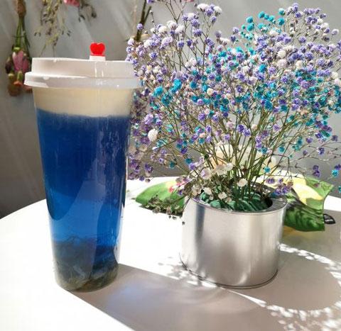 <strong>蓝茶BLUETEA</strong>