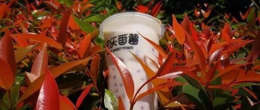 快乐番薯奶茶加盟